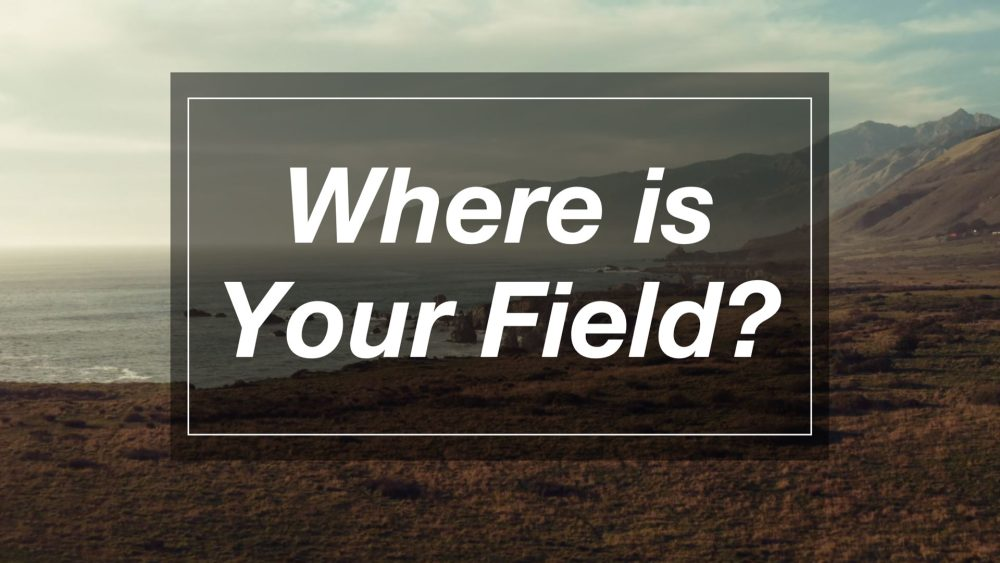 Where is Your Field? Image