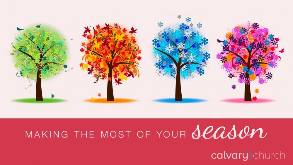 Making The Most Of Your Season Image
