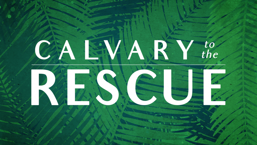 Calvary to the Rescue Image