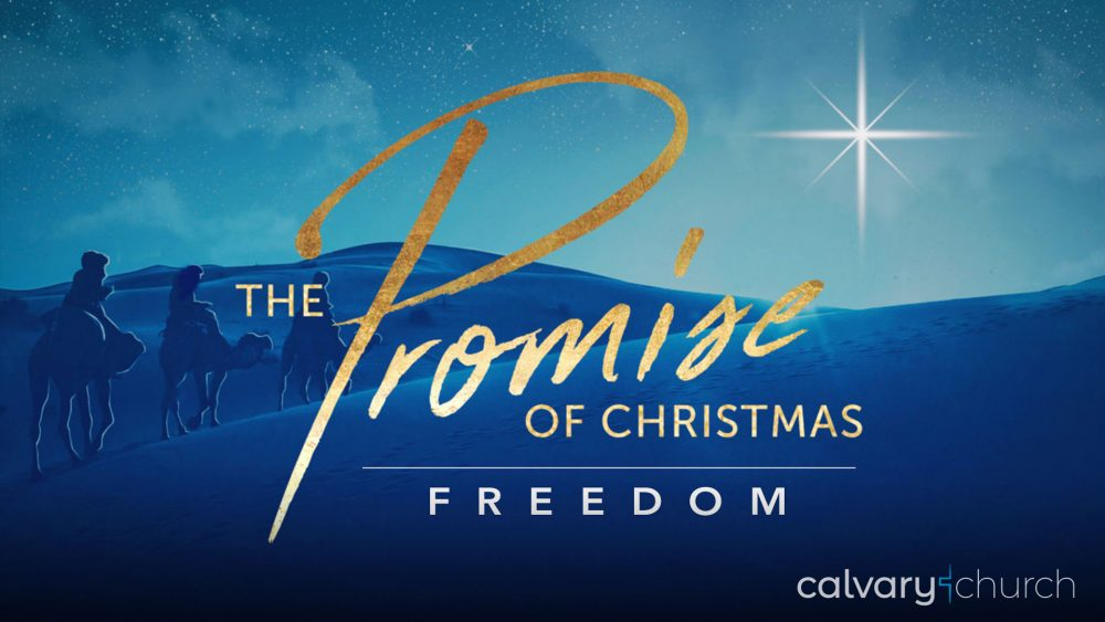 Freedom: The Promise of Christmas Image