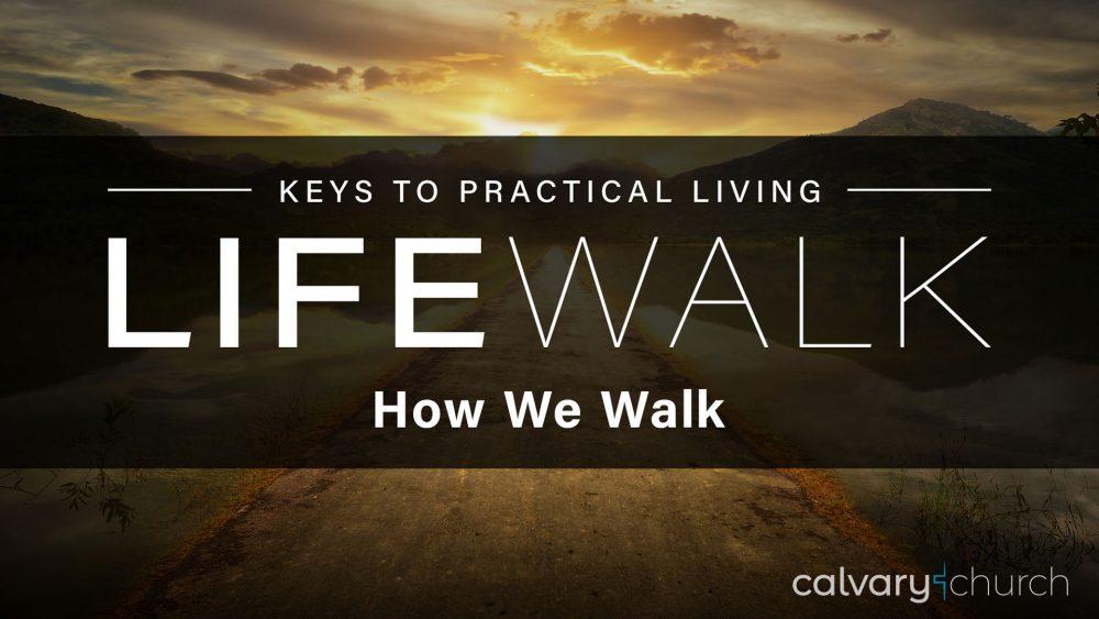 How We Walk Image