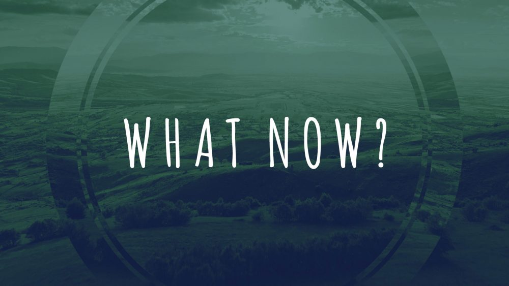 What Now? Decision Time! Image