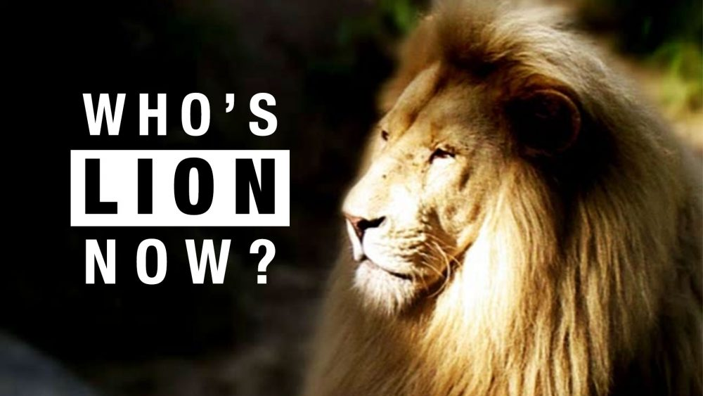 Who's Lion Now? You Can't Hide Your Lion Eyes Image